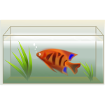 Orange fish in aquarium vector illustration