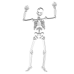 Vector clip art of scary skeleton