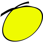 Handwritten circle yellow color