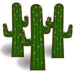 Three cactus