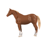 Vector illustration of horse standing