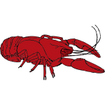 Red crayfish vector clip art