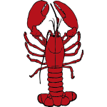 Vector drawing of lobster