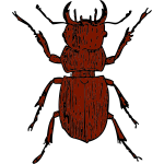 Vector graphics of stag beetle