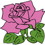 Vector clip art of rose