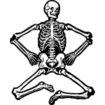 Sitting skeleton vector graphics