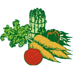 Vegetables vector graphics