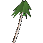 leaning palm tree