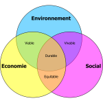 Durable development vector diagram