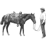 Man and his horse vector graphics