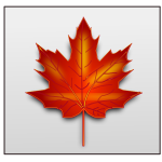 Brown maple leaf vector image