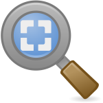 Best fit zoom icon
