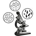 Microscope and virus