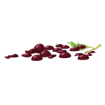 misc bunch of grapes hell