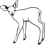 Fawn outline vector illustration