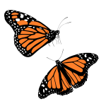 Vector clip art of black and orange butterflies