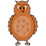 nraged owl   front view