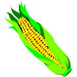 Color vector image of ar of corn