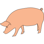 Pig foraging vector clip art