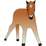 Vector drawing of young foal