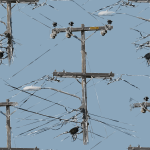 power lines 2015082851