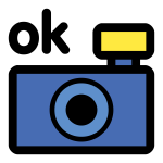 Photo camera OK icon vector clip art