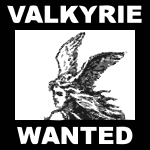 request Character 15 VALKYRIE 2015072837