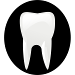 Tooth black an dwhite pictogram vector image