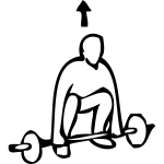 Heavy weightlifting exercise instruction vector clip art