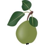 stewed pear with leafs