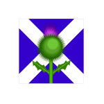 Scottish thistle and flag vector image