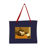 Bag with cat picture