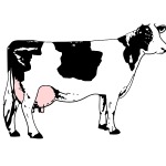 Vector image of cow full of milk