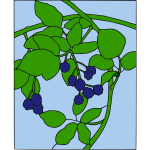 Blackberry branch motif