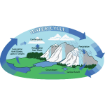 Water cycle vector illustration
