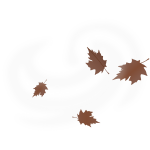 Brown fall leaves vector drawing on white background